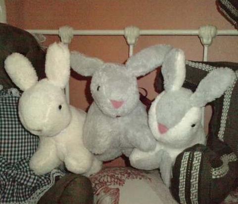 Doudou lapins